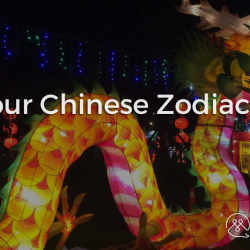 Unterstanding China - PART XX - Know your Chinese Zodiac Animals - Blog