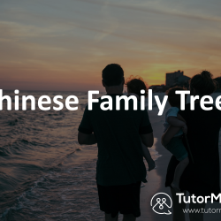 Talk Family tree in Spoken Chinese