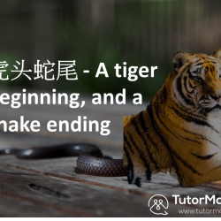 Chinese chengyu about tigers