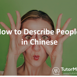 Chinese language descriptions